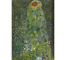 Gustav Klimt - The Sunflower 1907 Photographic Print