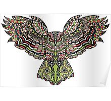 Colorfull gorgeos eagle owl Poster