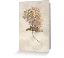 Hydrangea Softness Greeting Card