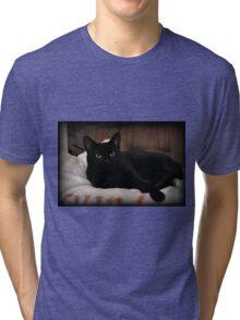 Reclining Tri-blend T-Shirt