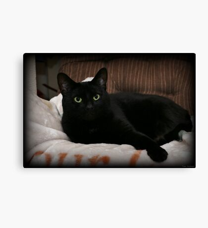 Reclining Canvas Print