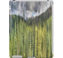 National Forest Cosumnes River 2 iPad Case/Skin
