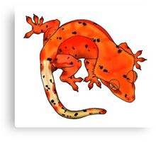 Red Dalmation Crested Gecko Canvas Print
