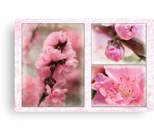 Spring triptych in pink Canvas Print