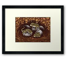Tuatara: the three-eyed baby dragon of New Zealand Framed Print
