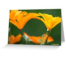 WHIRLWIND POPPIES Greeting Card
