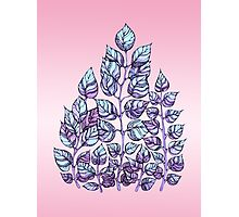Rose Quartz and Serenity hand drawn and watercolor leaves  Photographic Print
