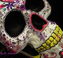 Attitude & Skulls by Rita  H. Ireland