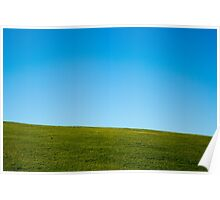Grass and sky Poster