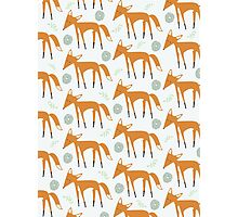 Foxy Pattern Photographic Print