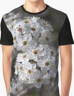 Displaying Spring Graphic T-Shirt