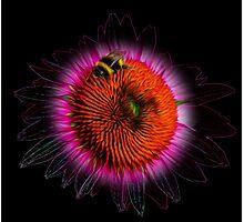 Surreal bee Photographic Print