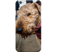 Airedale XX iPhone Case/Skin