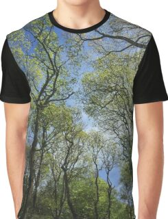 Mr Blue Sky 2 Graphic T-Shirt