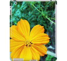 Orange Cosmos iPad Case/Skin