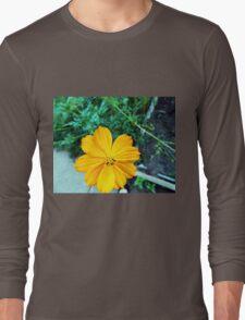 Orange Cosmos Long Sleeve T-Shirt