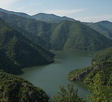Verdant Mountains Spilling in the Green Water by Georgia Mizuleva