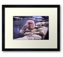 ...and who the hell are you? Framed Print
