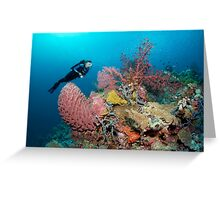 The Perfect Reef Greeting Card