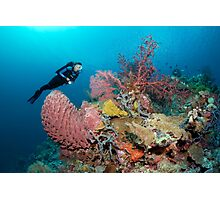 The Perfect Reef Photographic Print