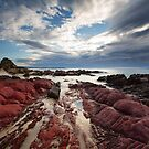 Red Rocks by David Haworth