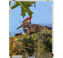 Pileated Woodpecker iPad Case/Skin
