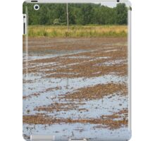 paddy field iPad Case/Skin