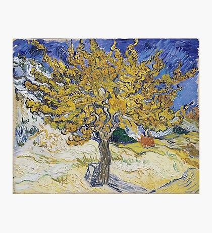 Vincent Van Gogh - Mulberry Tree, 1889 Photographic Print