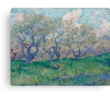 Vincent Van Gogh - Orchard In Blossom, 1888 01 Canvas Print