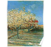 Vincent Van Gogh - Orchard In Blossom, 1888 02 Poster