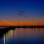 Night lights on the bay by collpics
