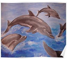 Jumping Dolphins And  Blue Sea Poster