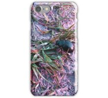 Beetle in Pink iPhone Case/Skin