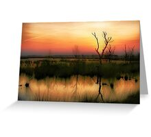 Sunset in the Wetland Fochteloerveen Greeting Card
