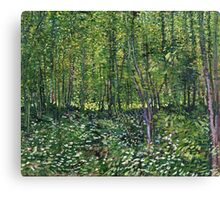 Vincent Van Gogh - Trees And Undergrowth, July 1887 - 1887  Canvas Print