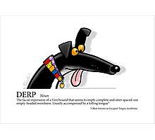 Greyhound Glossary: Derp Photographic Print
