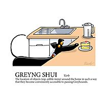 Greyhound Glossary: Greyng Shui Photographic Print