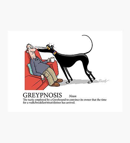 Greyhound Glossary: Greypnosis Photographic Print