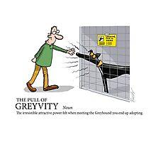 Greyhound Glossary: Greyvity Photographic Print
