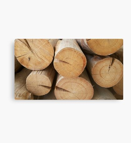 wooden layer Canvas Print