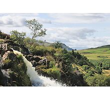 Loup of Fintry Photographic Print