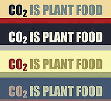 Carbon Dioxide Is Plant Food by morningdance