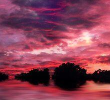 Scarlet Skies by Jessica Jenney
