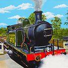 Southern Steam by Paula Oakley