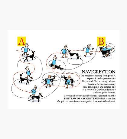 Greyhound Glossary: Navigreytion Photographic Print