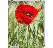 poppies in the field iPad Case/Skin