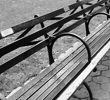 Sit Awhile  by Lynnrmorris