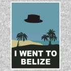 I WENT TO BELIZE (X-Files / Breaking Bad) by Théo Proupain