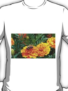 Enjoying a Marigold T-Shirt