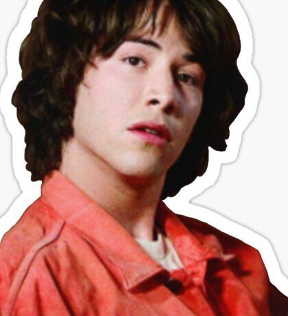 "Ted ""Theodore"" Logan Sticker"